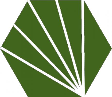 Шестиугольная цементная плитка Luxemix с лучиками
