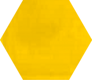 Hexagon col_1023